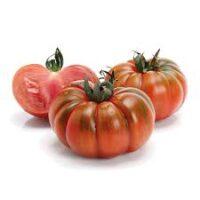 Pomodoro Costoluto gr500